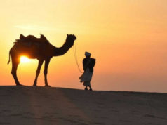 Why one should go for overnight camping at Desert Safari Dubai