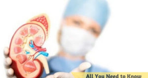 All You Need to Know about Urologists