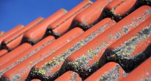 How to keep your roof clean