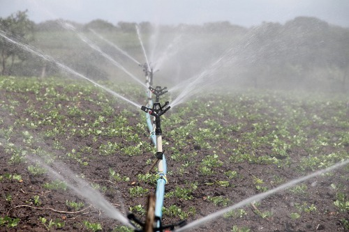 How Irrigation System Works For Your Garden in winter