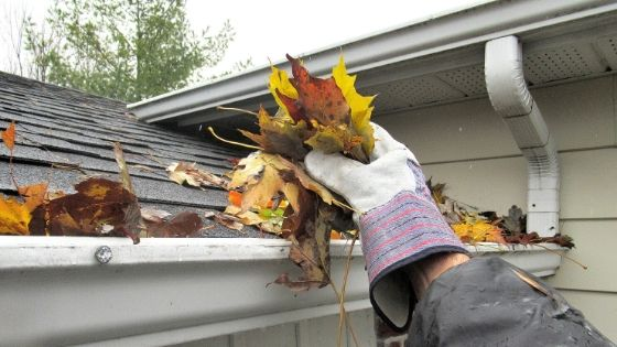 Choosing a Company for Gutter Cleaning Melbourne