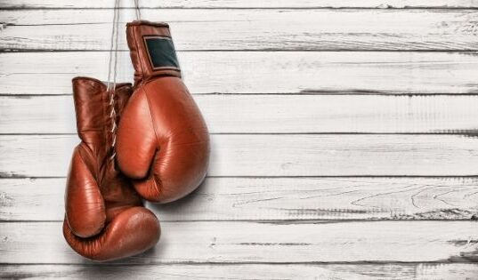 How Beginners Can Buy the Right Boxing Gloves