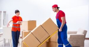 What Is The Future Of Removals Service Like