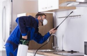 What Questions Should I Ask When Hiring a Local Pest Control Company