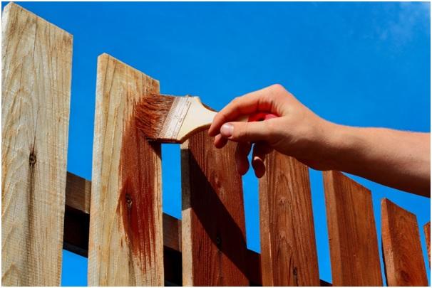Fence Staining for Beginners - The Basics Explained