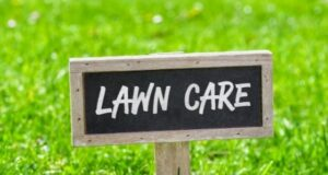 How to Properly Prepare Your Lawn for Winter